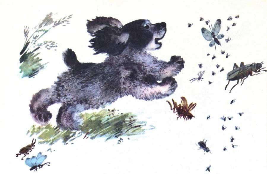 что евгений чарушин рисунки животных говорят, что скоро